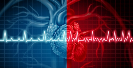 """Naxos study: risk of bleeding with oral anticoagulants in nonvalvular atrial fibrillation patients in France"""